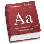 Terms catalog