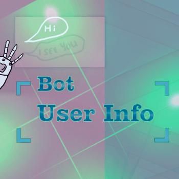 Bot User Info