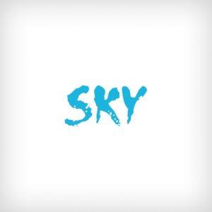 Sky - премиум тема для WP